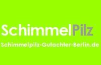 Baubiologe Schimmelpilz Berlin