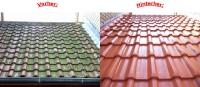 Dachbeschichtungen - Dachreinigung - Dachsanierung