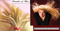 Paradise of Hair, online shop, extensions ,haarver