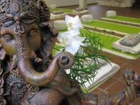 Yoga, Werne, Ganeshas Garten