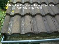 Dachreinigung - Dachbeschichtung, Lothar Kramer