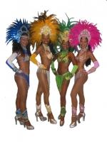 SAMBA DO BRASIL - Brasil Samba Show
