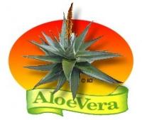 Aloe Vera - Natur pur