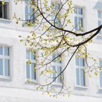 Bild Immobilienfond von Pro·Investor als Altersvorsorge